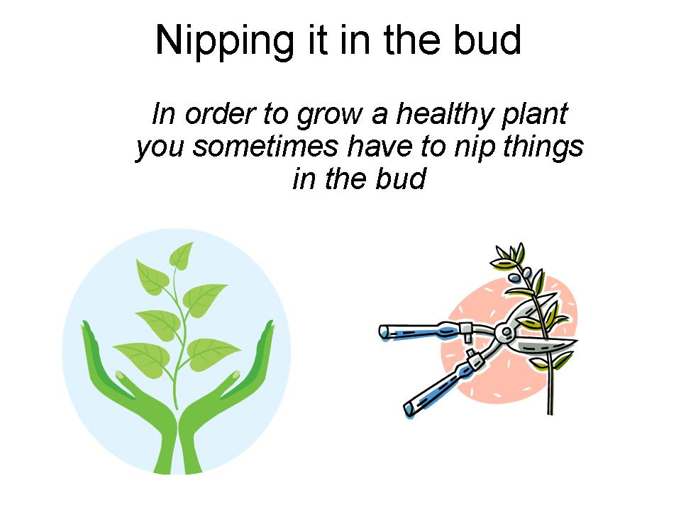 Nip the evil in the bud