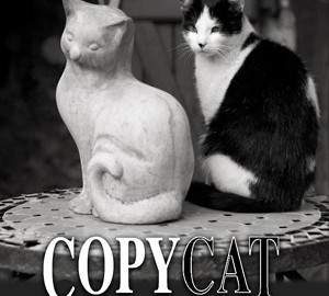 copycat-innovation-a-practical-route-to-profitable-innovation