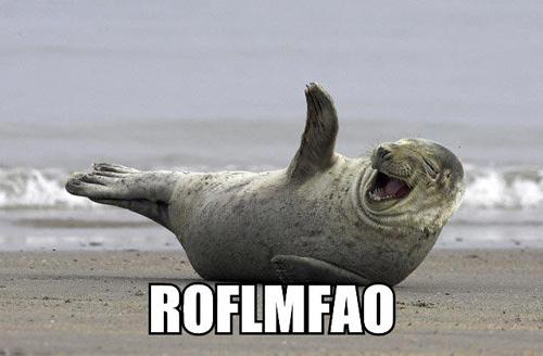 roflmfao.jpg